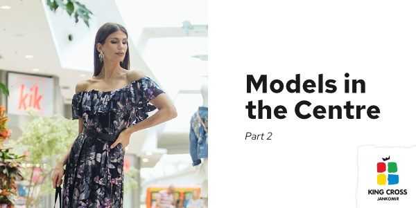 Models in the Centre — part 2